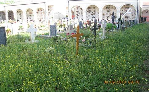 Cimitero di Casumaro in stato di abbandono?